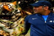 Photo of क्रिकेट से दूर महेंद्र सिंह धोनी पहुंचे बाघ देखने, शेयर की ये तस्वीर