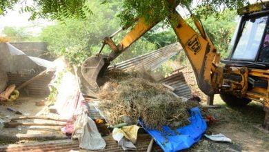 Photo of निगम ने हटाए 05 पशु बाड़े